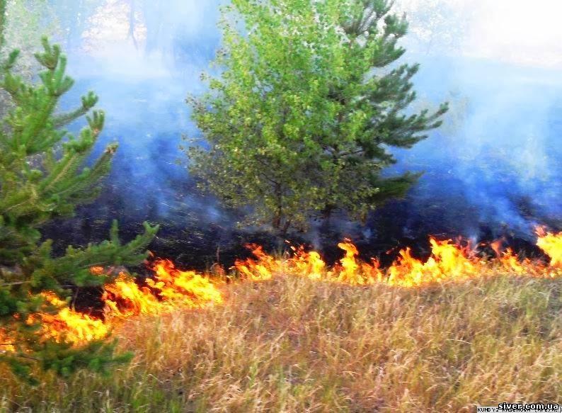 Спалювання сухої трави – небезпека для життя!     Зимна Вода - офіційний  сайт населеного пункту